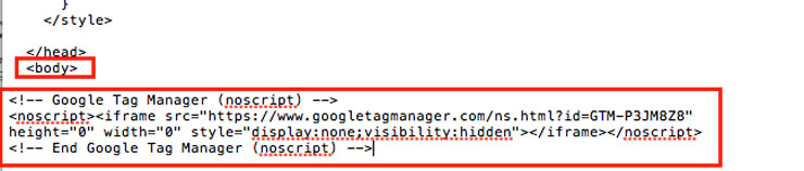google-tag-manager-body-tag